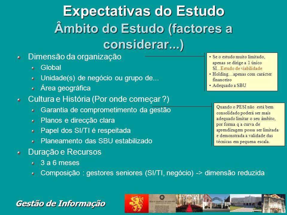 Gestão de Informação Expectativas do Estudo Âmbito do Estudo (factores a considerar...) Dimensão da organização Global Unidade(s) de negócio ou grupo