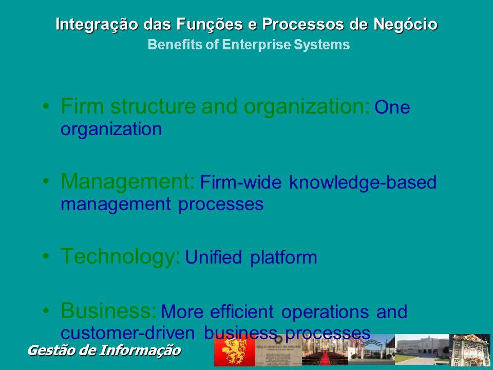 Gestão de Informação Figure 2-17 Integração das Funções e Processos de Negócio Integração das Funções e Processos de Negócio Enterprise Systems