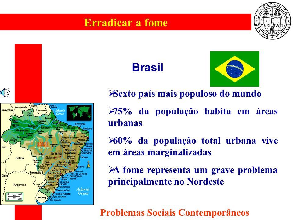 Erradicar a fome Problemas Sociais Contemporâneos Brasil Sexto país mais populoso do mundo 75% da população habita em áreas urbanas 60% da população t