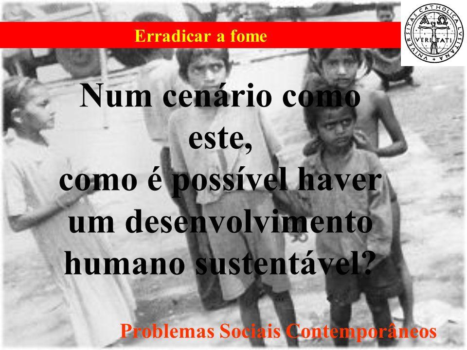 Erradicar a fome Problemas Sociais Contemporâneos Num cenário como este, como é possível haver um desenvolvimento humano sustentável?