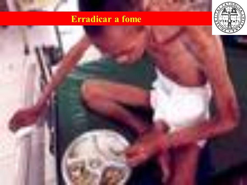 Erradicar a fome Problemas Sociais Contemporâneos
