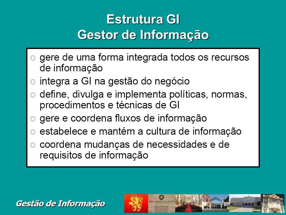 Gestão de Informação Estrutura GI Gestor de Informação
