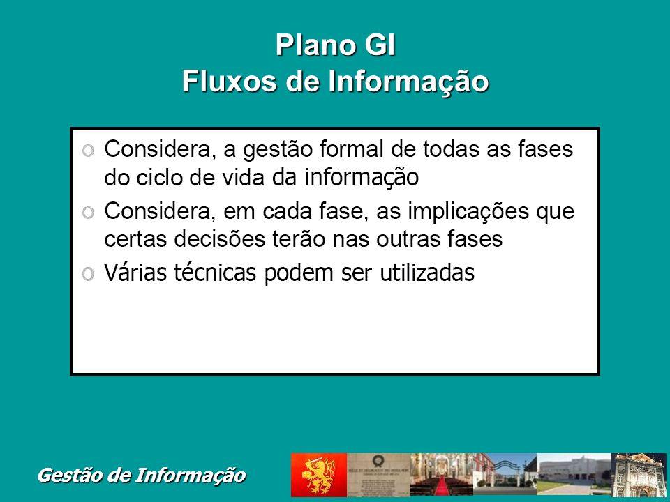 Gestão de Informação Plano GI Fluxos de Informação