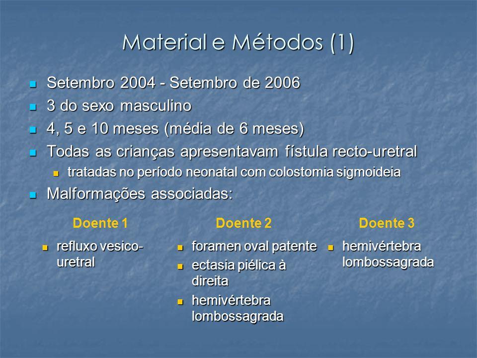 Material e Métodos (1) Setembro 2004 - Setembro de 2006 Setembro 2004 - Setembro de 2006 3 do sexo masculino 3 do sexo masculino 4, 5 e 10 meses (médi