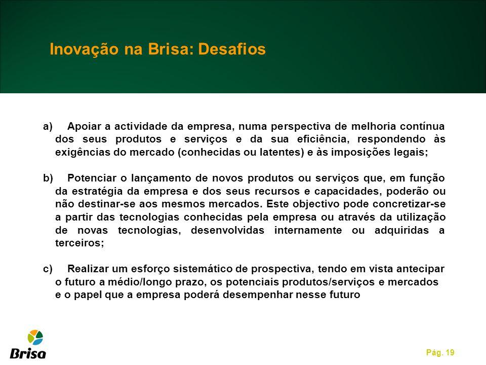 Pág. 19 a)Apoiar a actividade da empresa, numa perspectiva de melhoria contínua dos seus produtos e serviços e da sua eficiência, respondendo às exigê