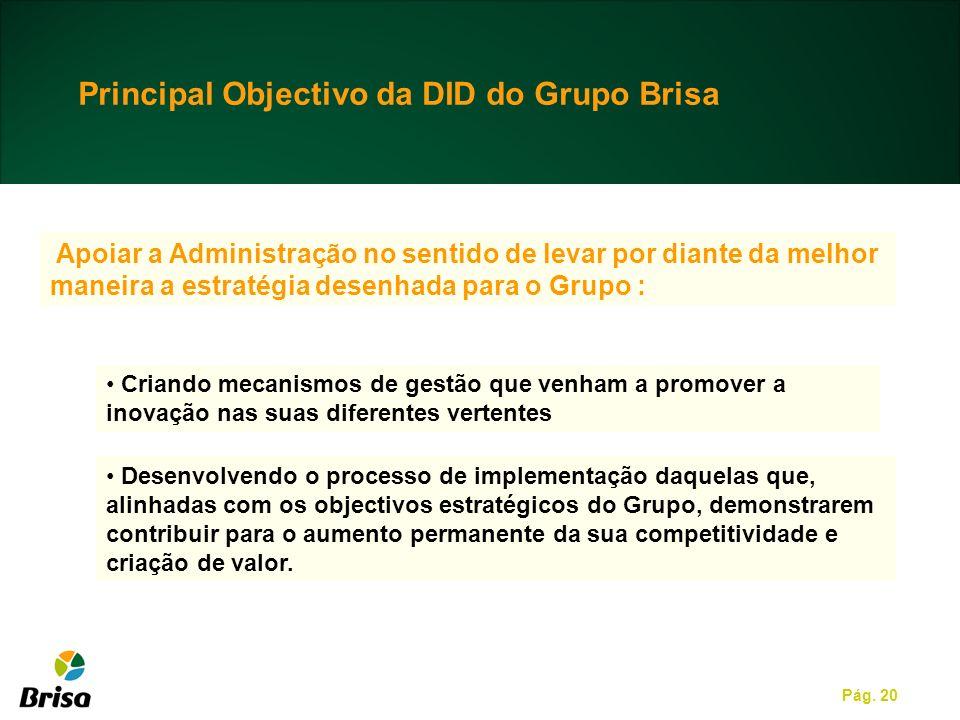 Pág. 20 Apoiar a Administração no sentido de levar por diante da melhor maneira a estratégia desenhada para o Grupo : Criando mecanismos de gestão que