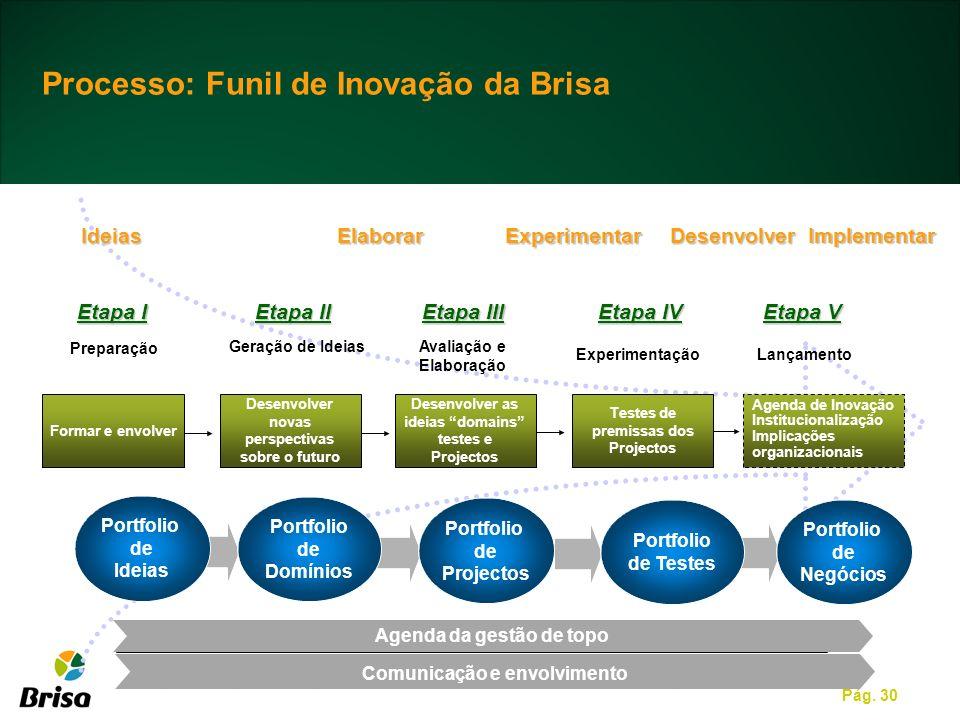 Pág. 30 Processo: Funil de Inovação da Brisa Formar e envolver Desenvolver as ideias domains testes e Projectos Desenvolver novas perspectivas sobre o