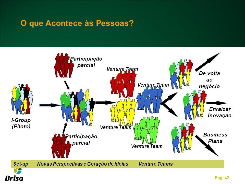 Pág. 42 Set-up Novas Perspectivas e Geração de Ideias Venture Teams De volta ao negócio I-Group (Piloto) Enraizar Inovação Business Plans Venture Team