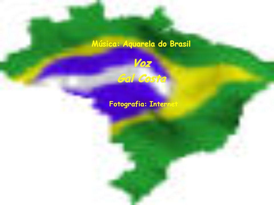 Música: Aquarela do Brasil Voz Gal Costa Fotografia: Internet