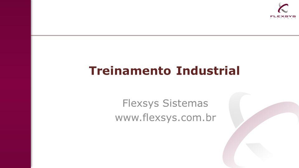 Treinamento Industrial Flexsys Sistemas www.flexsys.com.br