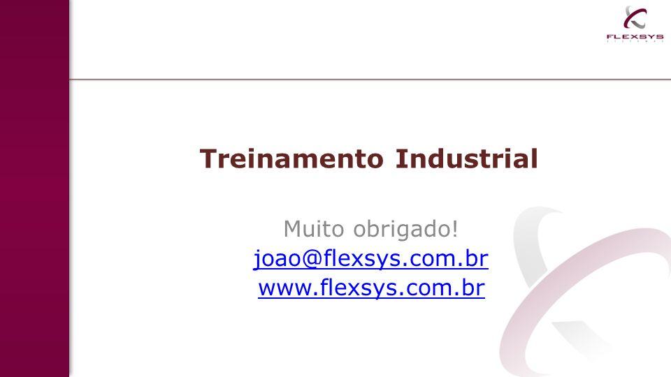 Treinamento Industrial Muito obrigado! joao@flexsys.com.br www.flexsys.com.br