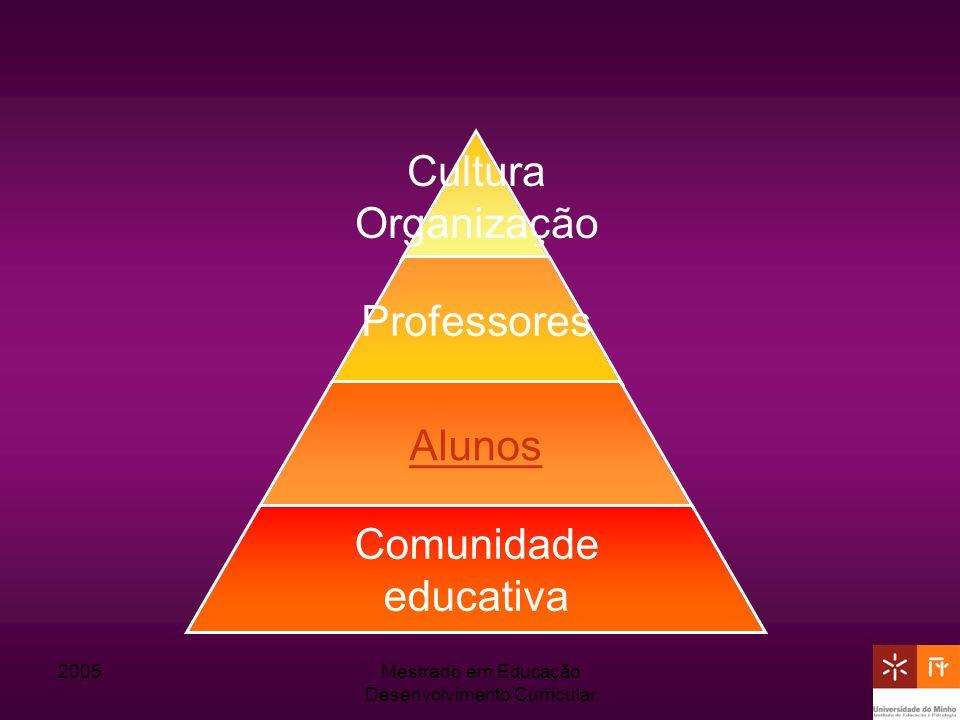 2005Mestrado em Educação Desenvolvimento Curricular Cultura Organização Professores Alunos Comunidade educativa