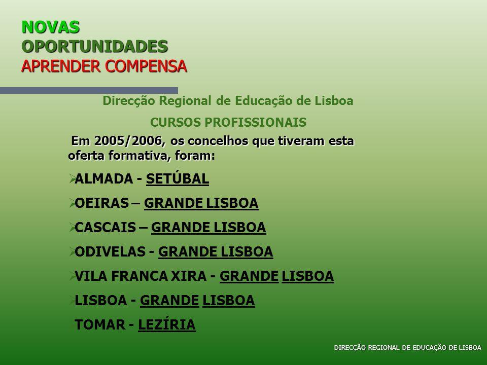 NOVAS OPORTUNIDADES APRENDER COMPENSA Direcção Regional de Educação de Lisboa CURSOS PROFISSIONAIS Em 2005/2006, os concelhos que tiveram esta oferta