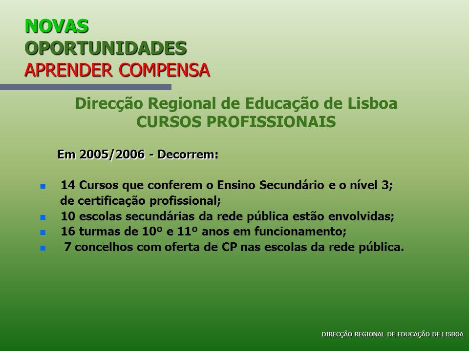 NOVAS OPORTUNIDADES APRENDER COMPENSA Em 2005/2006 - Decorrem Em 2005/2006 - Decorrem: n n 14 Cursos que conferem o Ensino Secundário e o nível 3; de