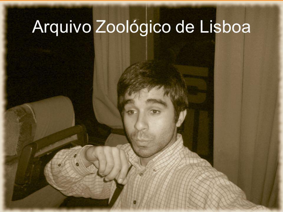 Arquivo Zoológico de Lisboa