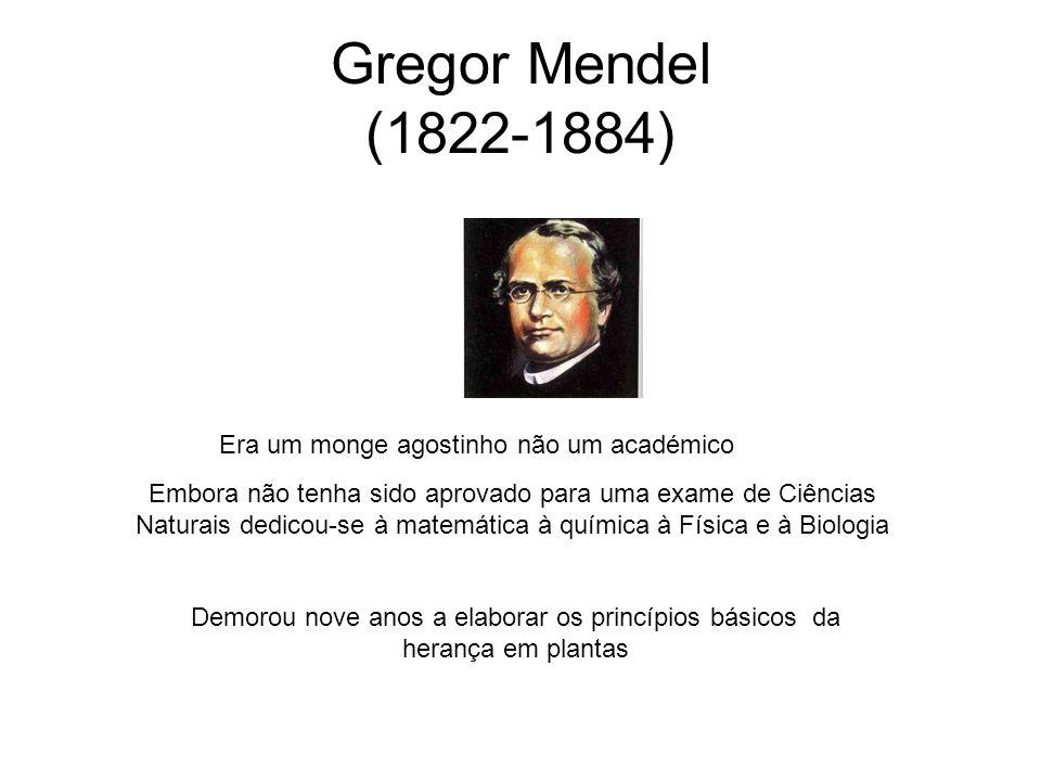 Gregor Mendel (1822-1884) Era um monge agostinho não um académico Embora não tenha sido aprovado para uma exame de Ciências Naturais dedicou-se à mate