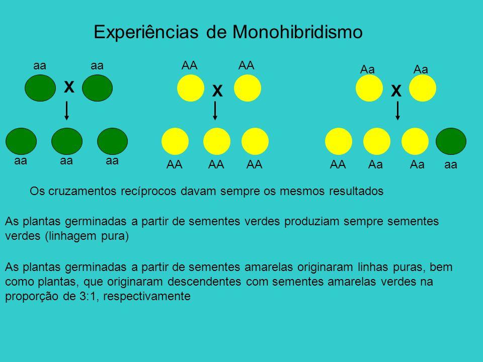 Experiências de Monohibridismo Os cruzamentos recíprocos davam sempre os mesmos resultados As plantas germinadas a partir de sementes verdes produziam