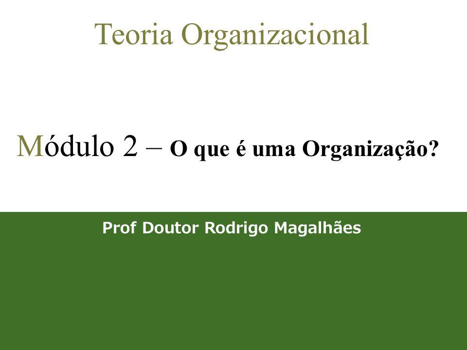 1 Teoria Organizacional Módulo 2 – O que é uma Organização? Prof Doutor Rodrigo Magalhães