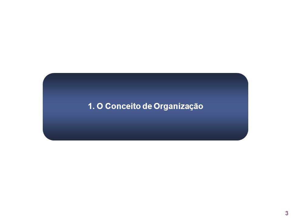 3 1. O Conceito de Organização