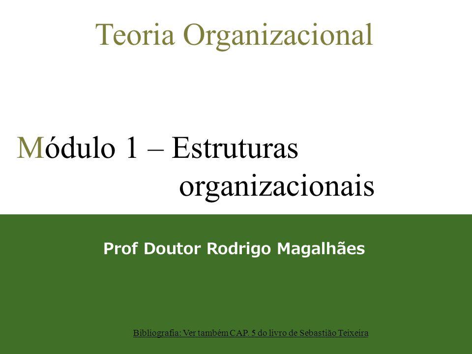 Teoria Organizacional Módulo 1 – Estruturas organizacionais Prof Doutor Rodrigo Magalhães Bibliografia: Ver também CAP. 5 do livro de Sebastião Teixei