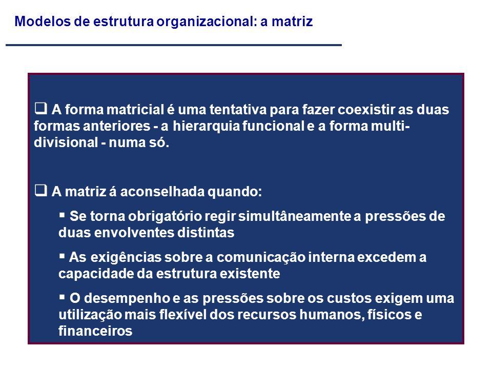 Modelos de estrutura organizacional: a matriz A forma matricial é uma tentativa para fazer coexistir as duas formas anteriores - a hierarquia funciona