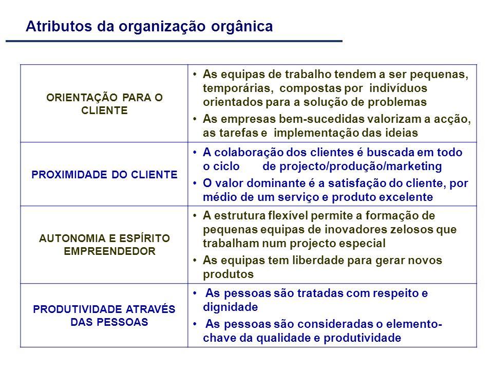ORIENTAÇÃO PARA O CLIENTE As equipas de trabalho tendem a ser pequenas, temporárias, compostas por indivíduos orientados para a solução de problemas A