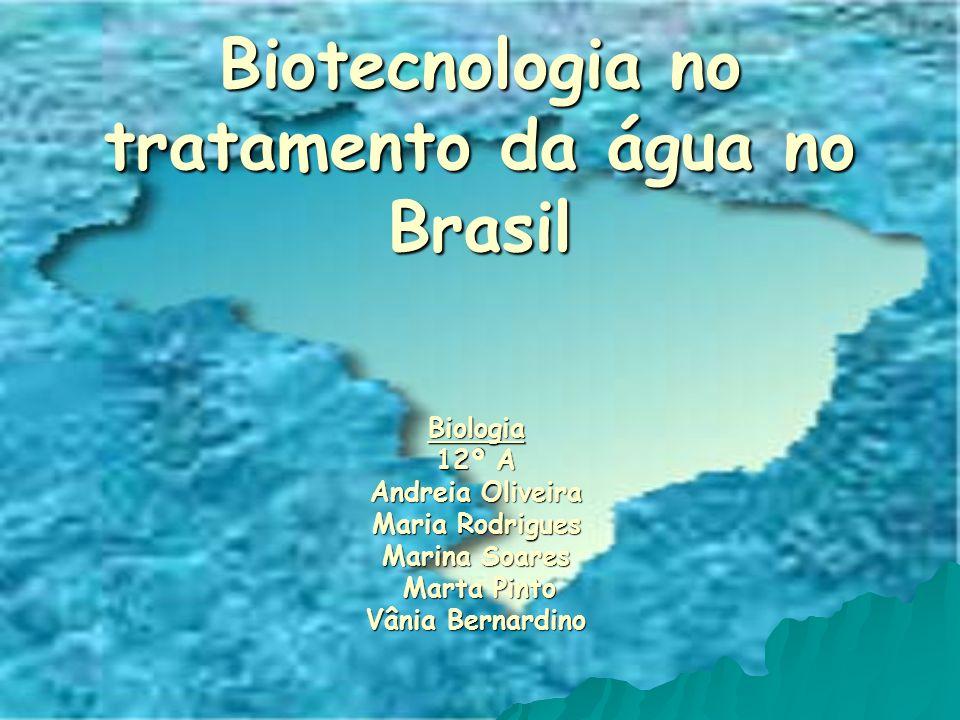 Biotecnologia no tratamento da água no Brasil Biologia 12º A Andreia Oliveira Maria Rodrigues Marina Soares Marta Pinto Marta Pinto Vânia Bernardino