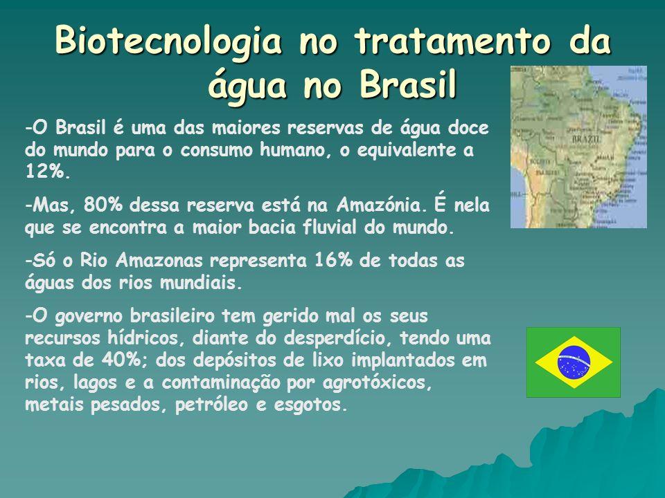 Biotecnologia no tratamento da água no Brasil -O Brasil é uma das maiores reservas de água doce do mundo para o consumo humano, o equivalente a 12%. -