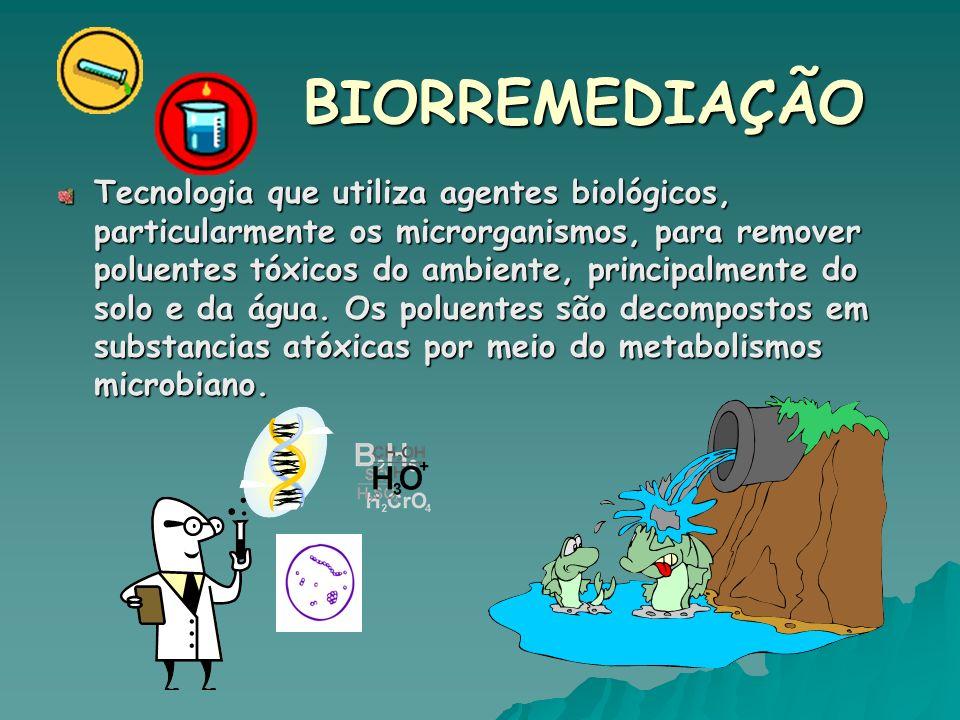 Três aspectos devem ser considerados: - A existência de microorganismos com capacidade catabólica para degradar o contaminante.
