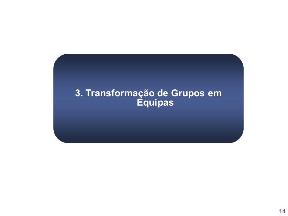 14 3. Transformação de Grupos em Equipas