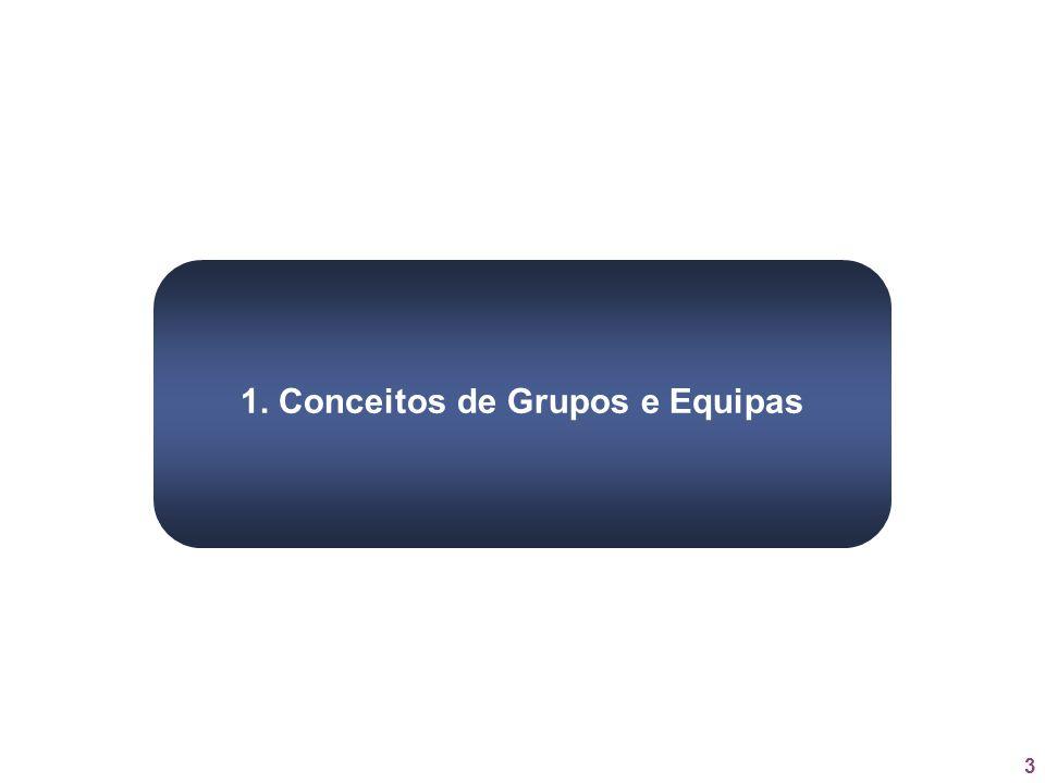 3 1. Conceitos de Grupos e Equipas
