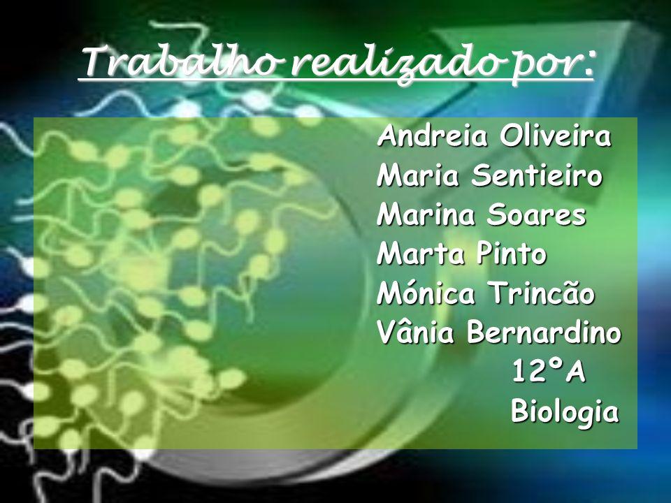 Trabalho realizado por : Andreia Oliveira Maria Sentieiro Marina Soares Marta Pinto Mónica Trincão Vânia Bernardino 12ºABiologia