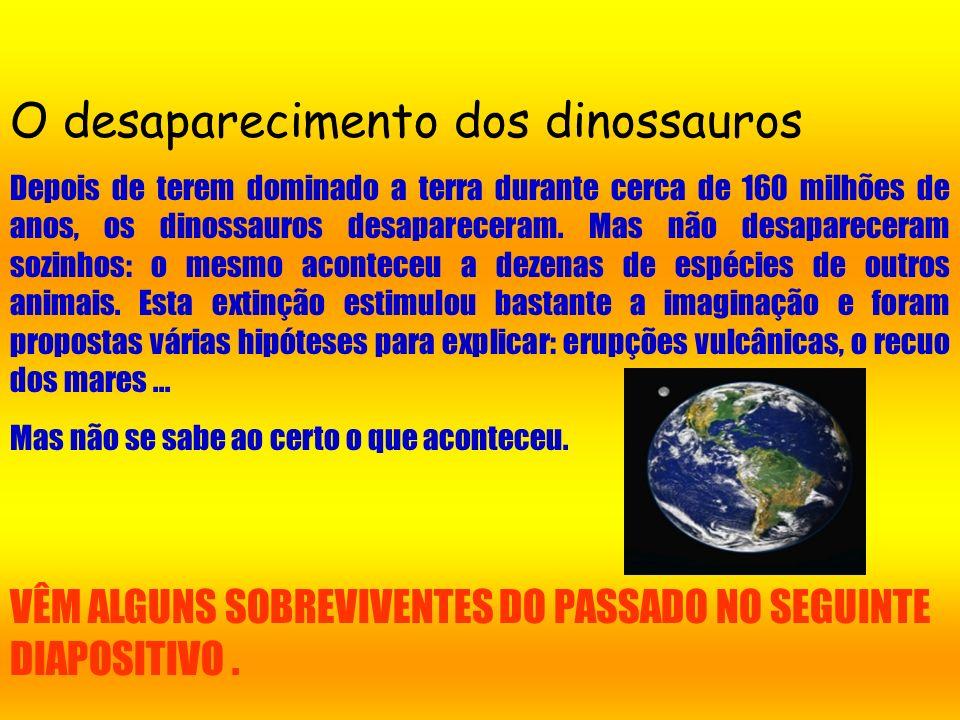 Os senhores dos ares e dos oceanos Enquanto os dinossauros dominavam a terra, no céu ressoavam os gritos de numerosos répteis voadores, ao passo que e