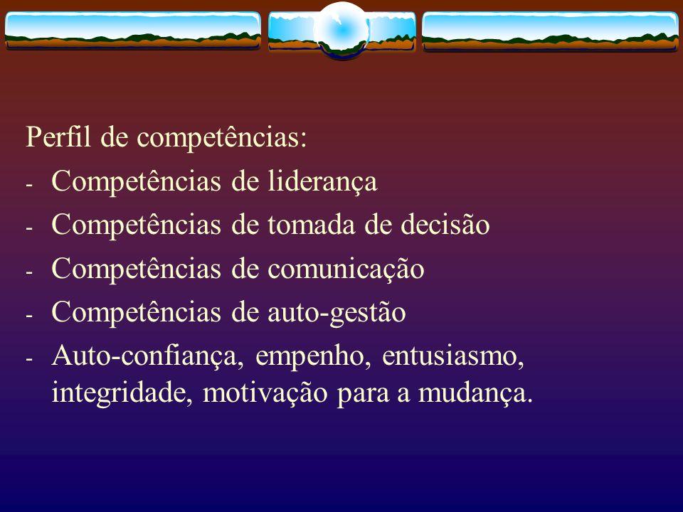 Perfil de competências: - Competências de liderança - Competências de tomada de decisão - Competências de comunicação - Competências de auto-gestão -