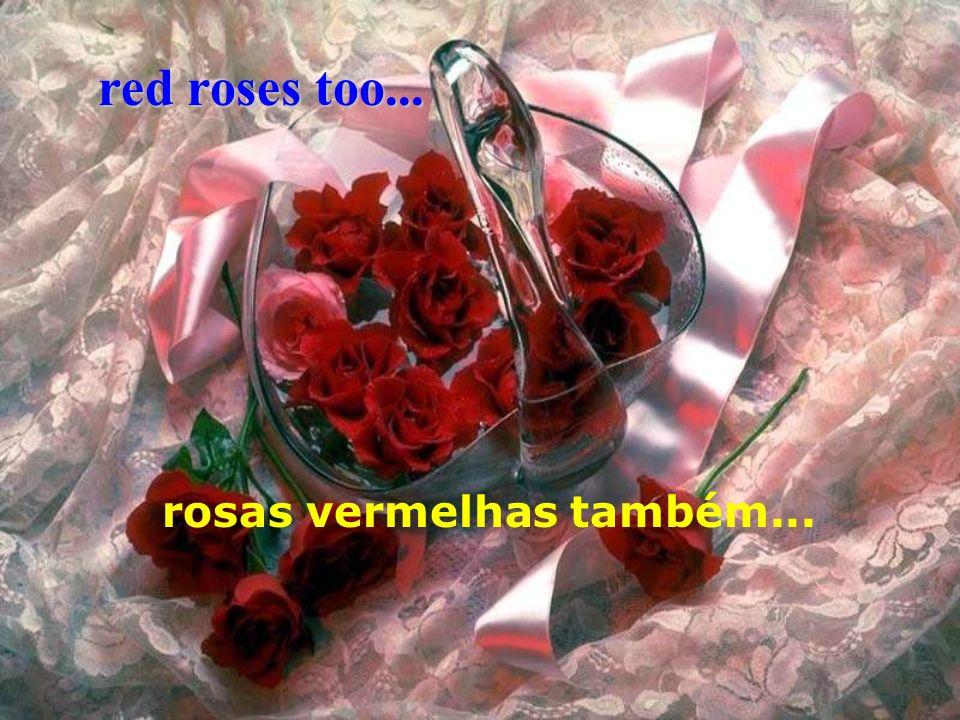 red roses too... rosas vermelhas também...