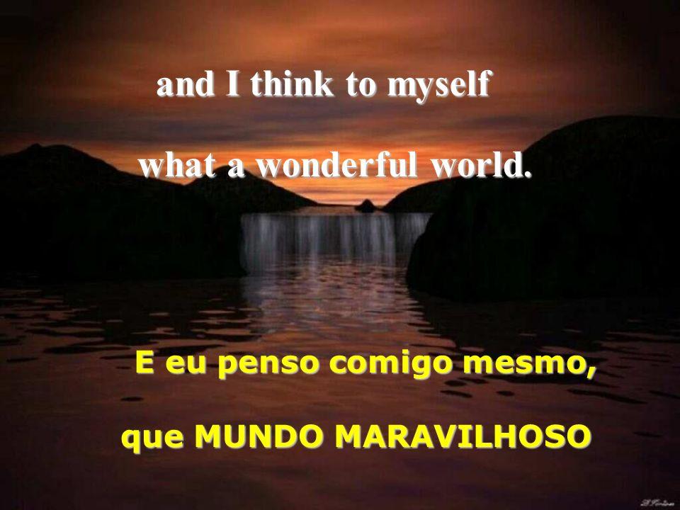and I think to myself E eu penso comigo mesmo, what a wonderful world. que MUNDO MARAVILHOSO