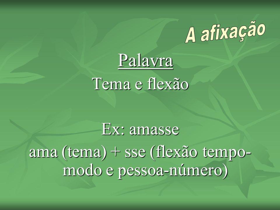 Palavra Tema e flexão Ex: amasse ama (tema) + sse (flexão tempo- modo e pessoa-número)