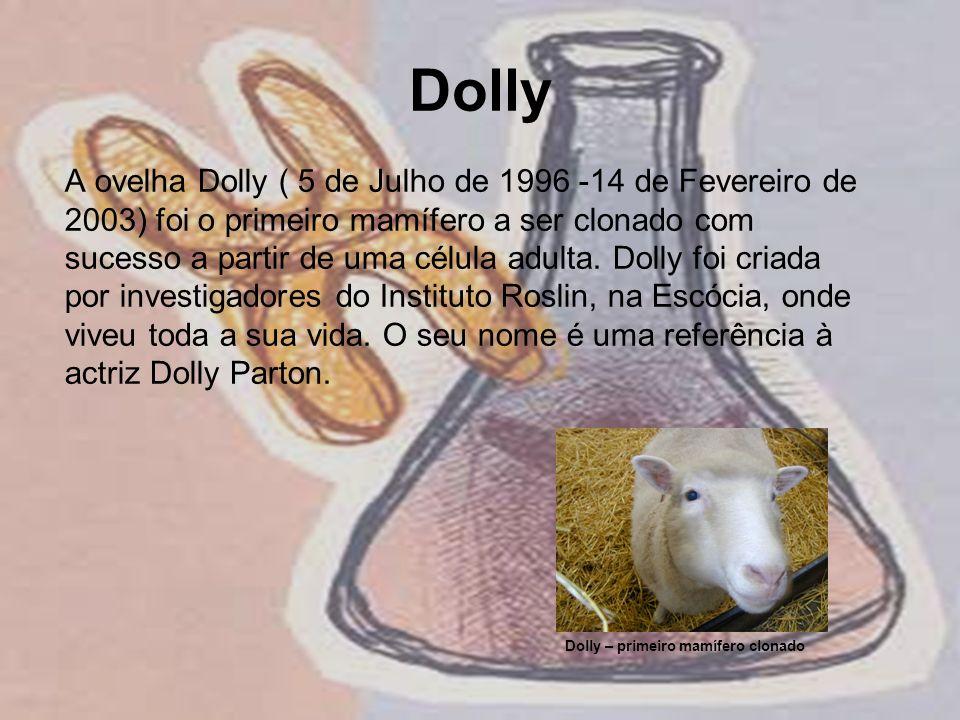 Dolly A ovelha Dolly ( 5 de Julho de 1996 -14 de Fevereiro de 2003) foi o primeiro mamífero a ser clonado com sucesso a partir de uma célula adulta. D