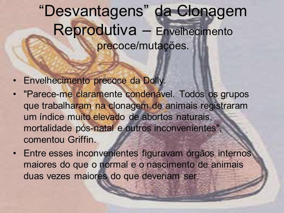 Desvantagens da Clonagem Reprodutiva – Envelhecimento precoce/mutações. Envelhecimento precoce da Dolly.