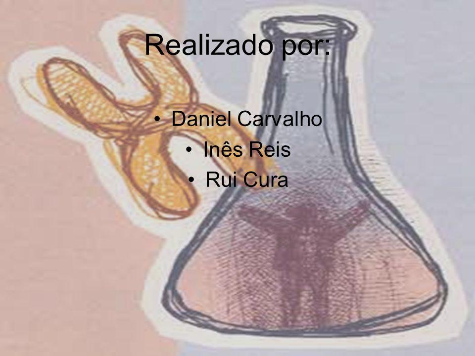 Realizado por: Daniel Carvalho Inês Reis Rui Cura