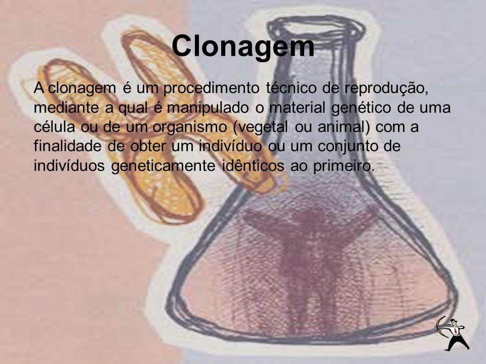 Clonagem A clonagem é um procedimento técnico de reprodução, mediante a qual é manipulado o material genético de uma célula ou de um organismo (vegeta