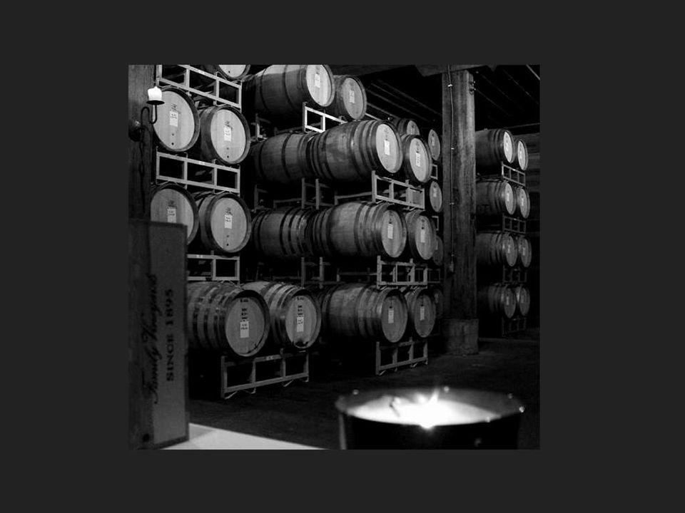 O que sabe saborear não bebe demasiado vinho, mas desfruta dos seus suaves segredos... Salvador Dali