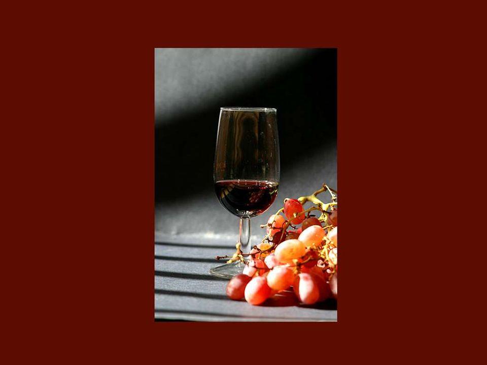 Entrai no mundo do vinho sem outra formacão profissional para além de uma certa gula para as boas garrafas! Colette