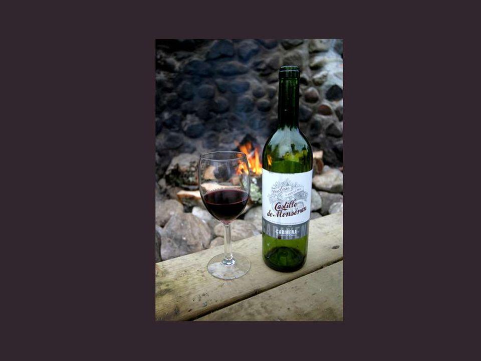 Há mais filosofia e sabedoria numa garrafa de vinho, que em todos os livros. Louis Pasteur