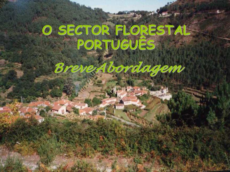 O SECTOR FLORESTAL PORTUGUÊS Breve Abordagem
