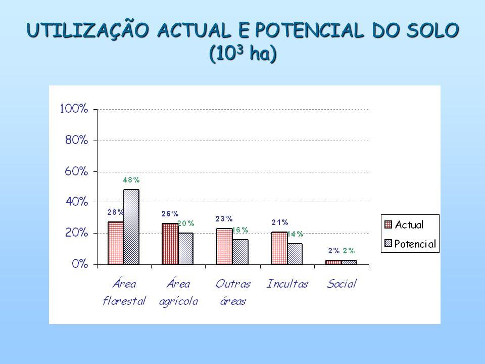 UTILIZAÇÃO ACTUAL E POTENCIAL DO SOLO (10 3 ha)