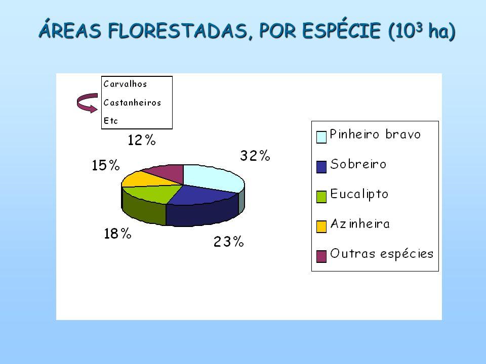 ÁREAS FLORESTADAS, POR ESPÉCIE (10 3 ha)