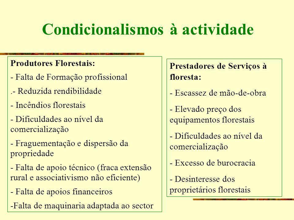 Condicionalismos à actividade Produtores Florestais: - Falta de Formação profissional.- Reduzida rendibilidade - Incêndios florestais - Dificuldades a