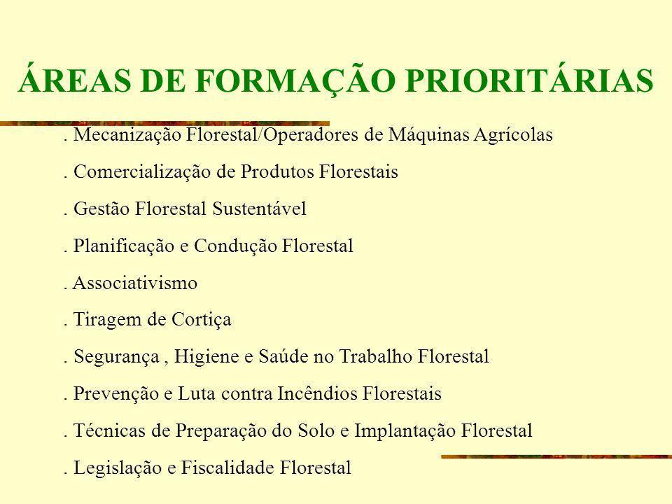 ÁREAS DE FORMAÇÃO PRIORITÁRIAS. Mecanização Florestal/Operadores de Máquinas Agrícolas. Comercialização de Produtos Florestais. Gestão Florestal Suste