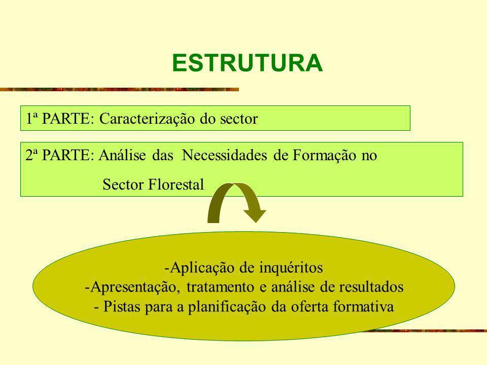 ESTRUTURA 1ª PARTE: Caracterização do sector 2ª PARTE: Análise das Necessidades de Formação no Sector Florestal -Aplicação de inquéritos -Apresentação